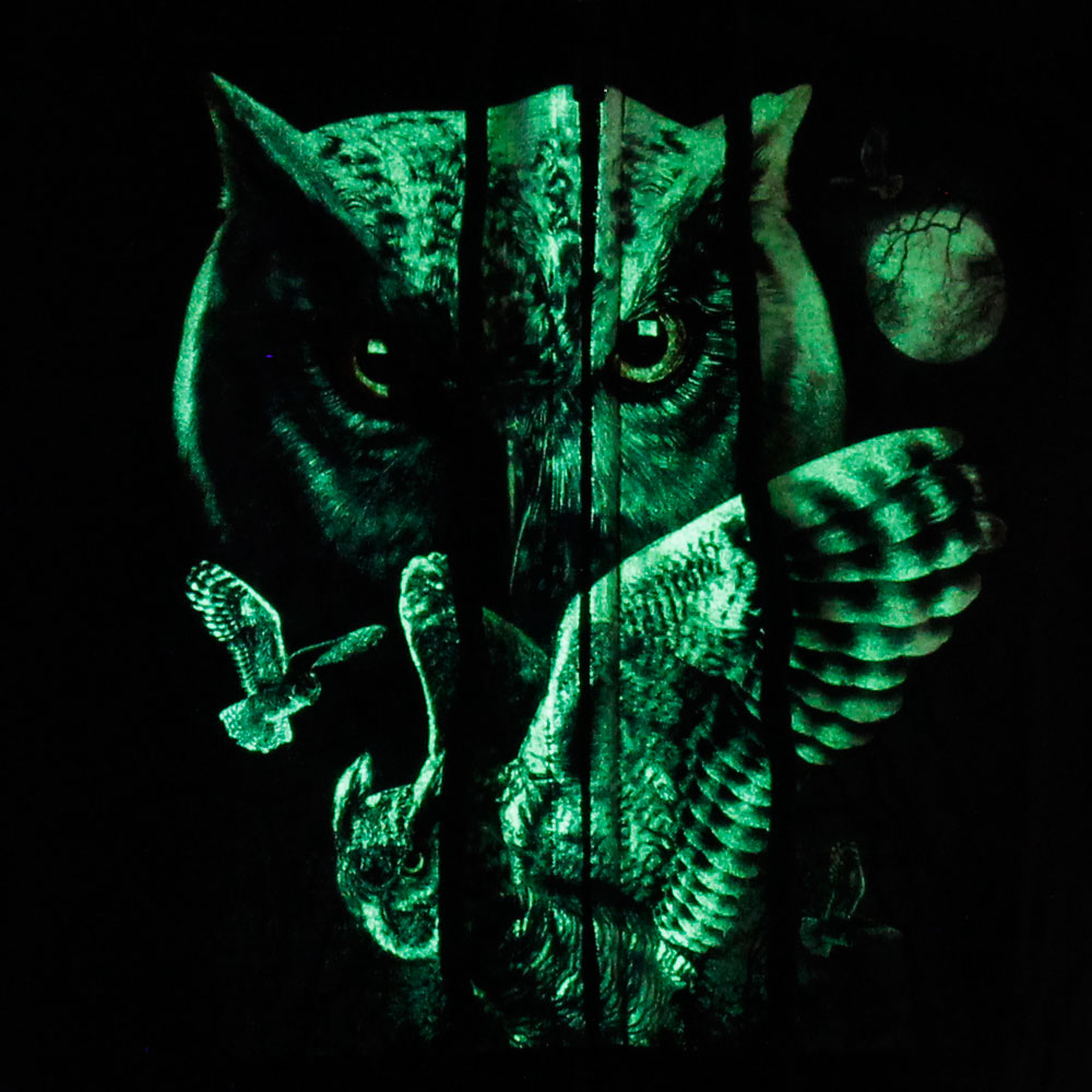 Hoodie with Hat Noctilucent of Owl and Eagle Design