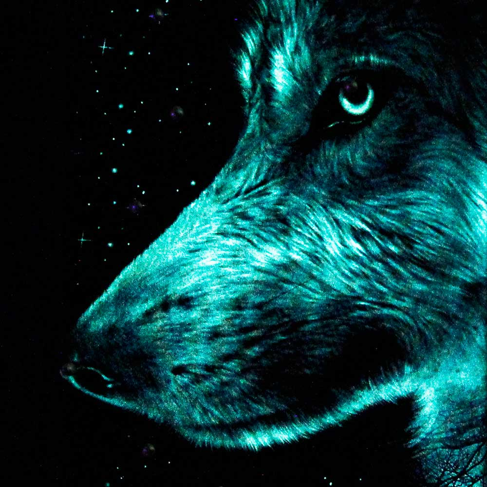 3D T-shirt Wolf Glow in the Dark