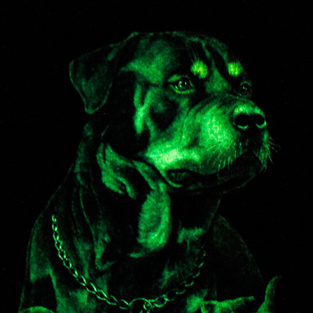 T-shirt Noctilucent Dog Kid