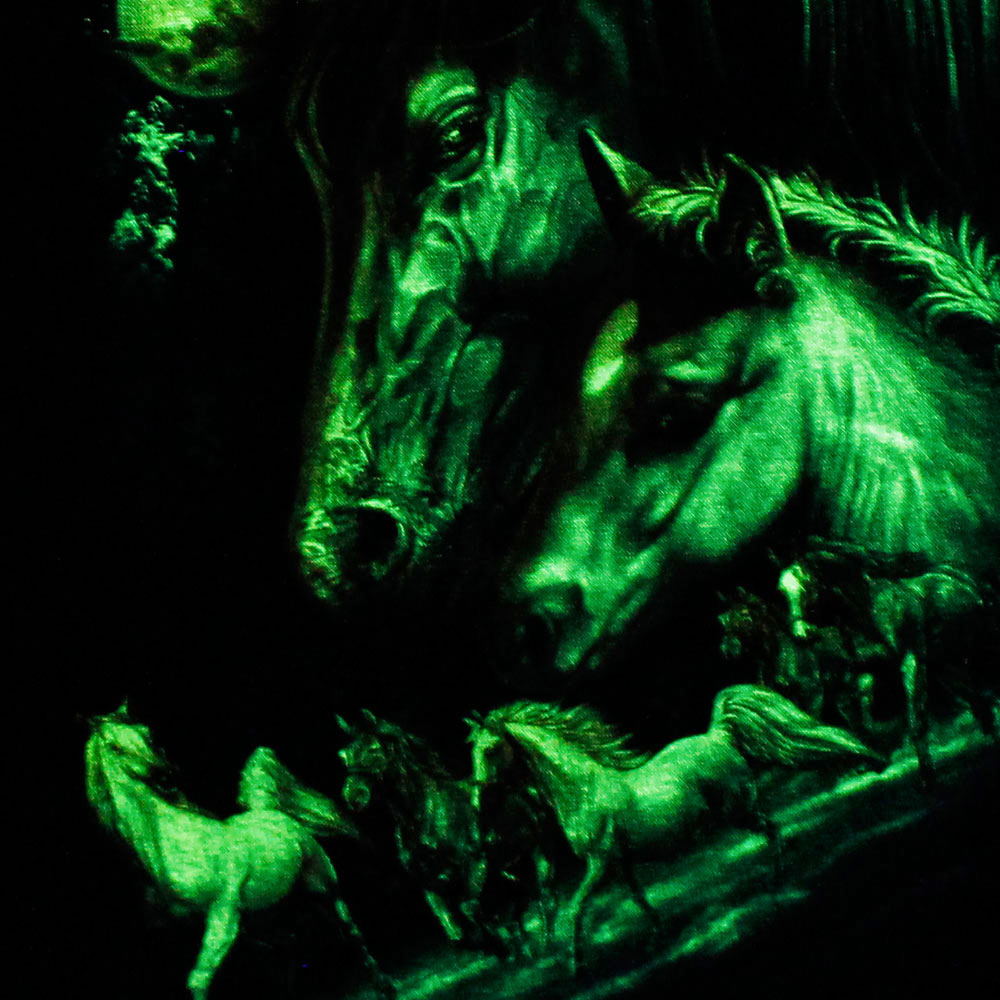 T-shirt Noctilucent Horse Kid